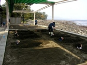 image Beppu Beach Sand Bath Municipal Hot Springs