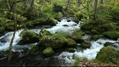image Oirase Mountain Stream